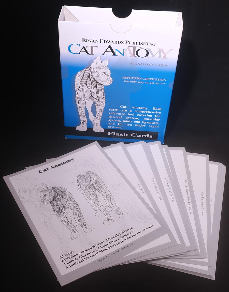Dog & Cat Anatomy Flash Cards | Bryan Edwards Publishing
