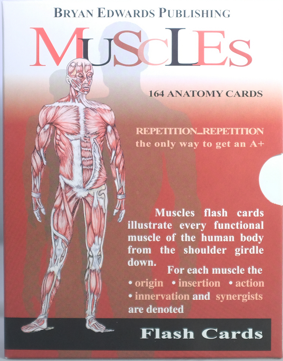 Muscles Flash Cards Bryan Edwards Publishing