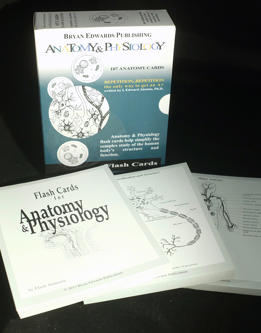 Anatomy & Physiology Flash Cards | Bryan Edwards Publishing